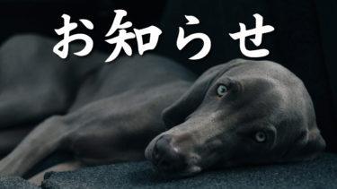 7周年記念祭のお知らせ